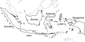 Mit mehr als 17.000 tropischen Inseln und einer immensen Artenvielfalt ist Indonesien ein Traum für Biogeographen. Quelle: d-maps.com, verändert.